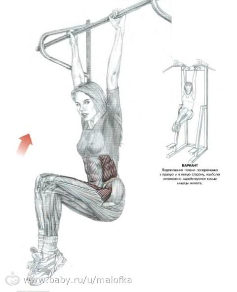 Комплекс ору по спортивной гимнастике для 1-4 класс. Подъем ног к груди в висе