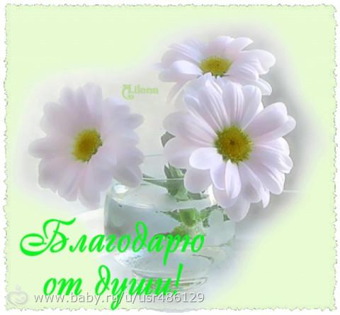 http://cs31.babysfera.ru/5/0/4/3/365902327.399112229.jpeg