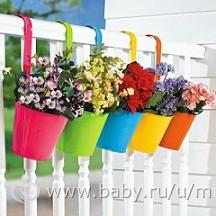 Какие цветы посадить на балконе: восточная сторона