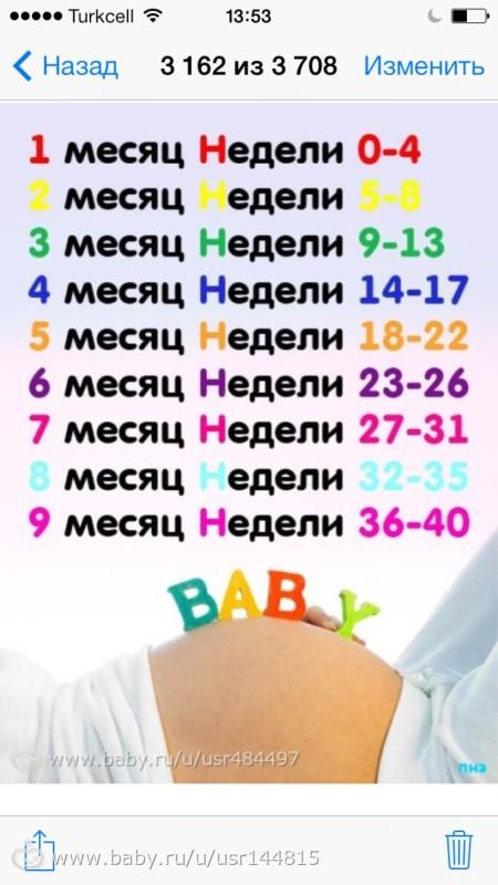 С какой недели беременности начинается 4 месяц