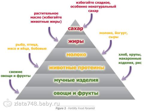 Наступит ли беременность если подмыться после акта