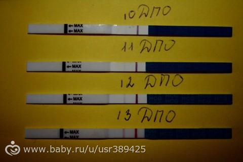 Тест на беременность 12