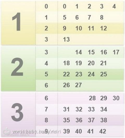 Скачать календарь беременности по неделям