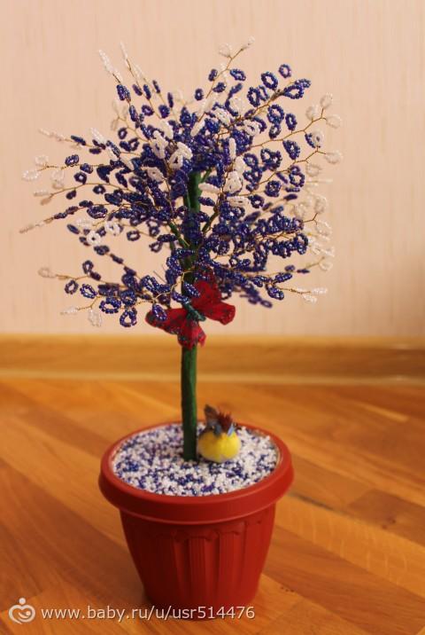Цветы в витебске цены и фото