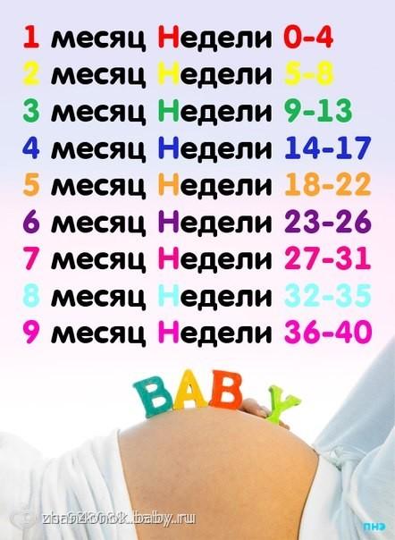 5 месяц это сколько недель беременности