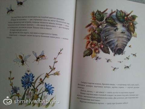 Бианки, добрые сказки про животных.