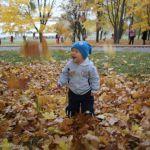 Листья желтые над городом кружатся =)