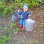 Собираем выращенный урожай))