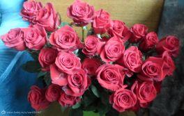 35 роз от любимого