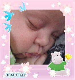 Самые сладкие сон, аж слюнки потекли ))